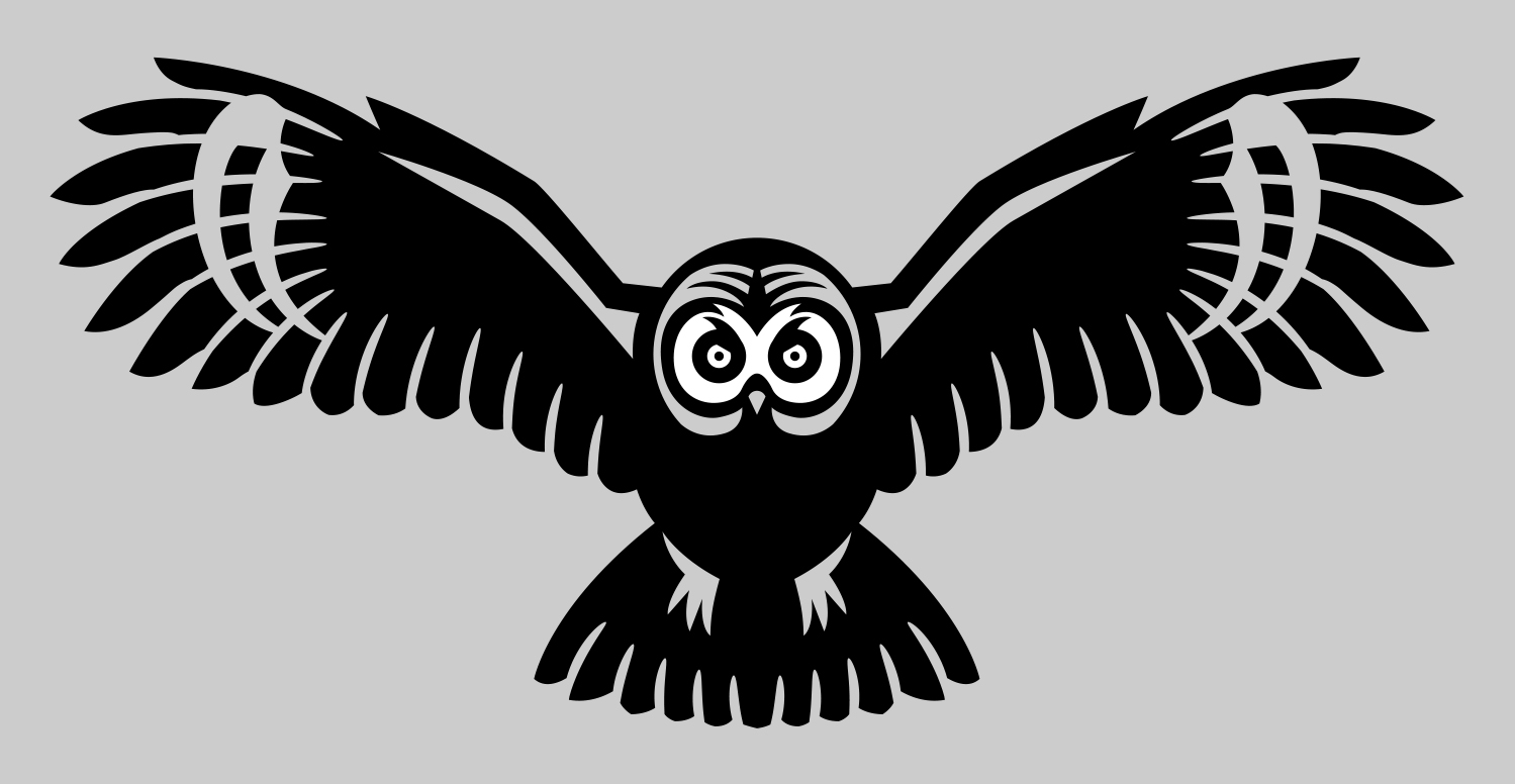 Owl, nature, clothing